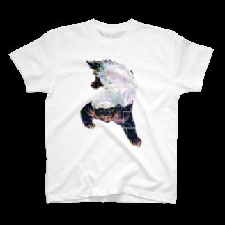 SHIMiZUのRATELTシャツ