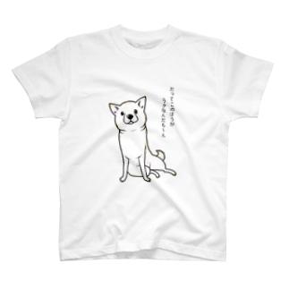 ななめ座り(白柴・文字入り) Tシャツ