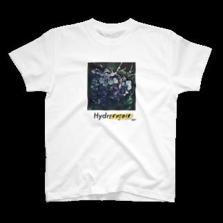 ORC3 online shopのHydrophobiaTシャツ