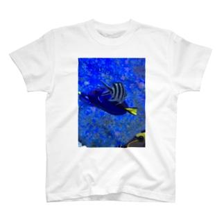交差する魚 Tシャツ