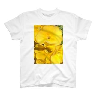 眩しいくらいの黄色 Tシャツ