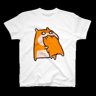NORICOPOの共食いTシャツ