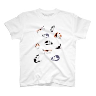 10匹ねこ Tシャツ