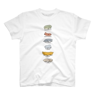 Fish or Newt? (reprise) Tシャツ