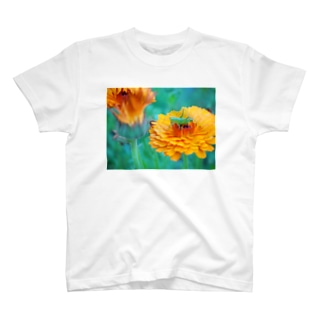 庭の花と虫 Tシャツ