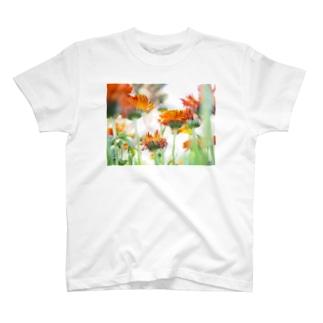光と花 Tシャツ