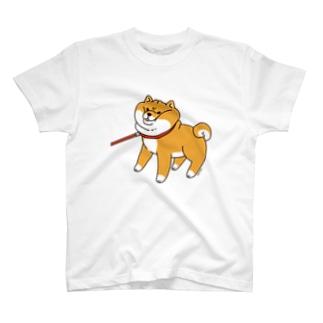 散歩から帰りたくない柴犬Tシャツ(ホワイト) Tシャツ