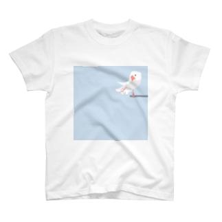 文鳥すさー Tシャツ
