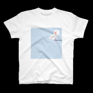 ビガクブの文鳥すさー Tシャツ