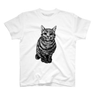 にゃんこ Tシャツ