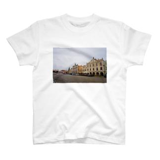 テルチのTシャツ Tシャツ