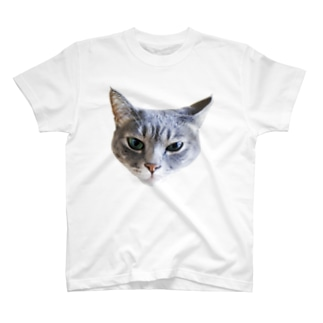Mute Tシャツ