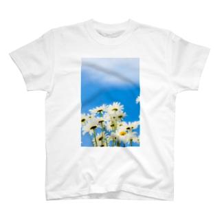 青い空白い花 Tシャツ