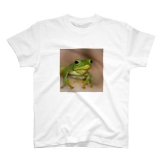 けろけろ Tシャツ