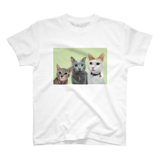 ミウちゃん ラムちゃん ノアちゃん Tシャツ