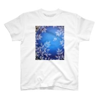 根津の森 Tシャツ