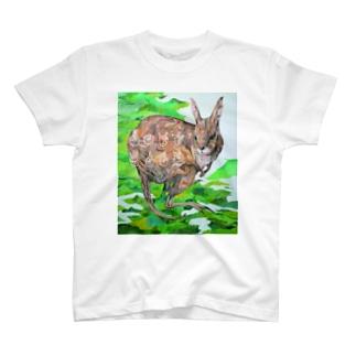 ウサギワラビー Tシャツ