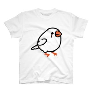 Chubby Bird キンカチョウ Tシャツ