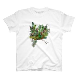 南国の植物 Tシャツ
