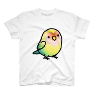 Chubby Bird コザクラインコ Tシャツ