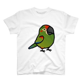 Chubby Bird アカミミコンゴウインコ Tシャツ