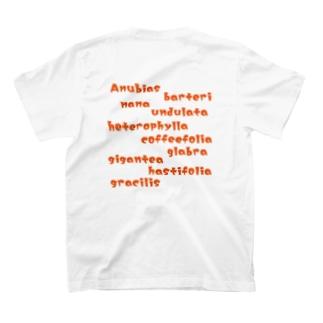アムビアス名前ロゴ T-Shirt