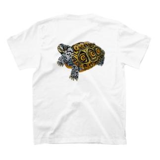 カロリナダイヤモンドバックテラピン T-shirts