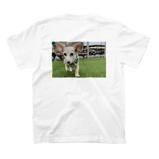 👶🏻 T-shirts