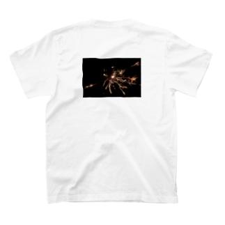 dream T-shirts