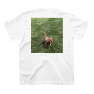 小豆は芝の上T T-shirts