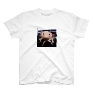 そっとみつめて T-shirts