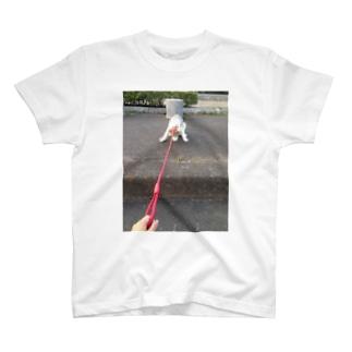 階段怖い。 T-shirts
