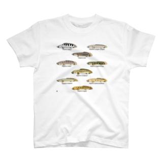 プチプチポリプ(上の巻) T-shirts