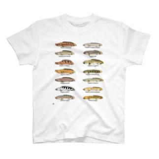 プチプチポリプ(オールスター) T-shirts
