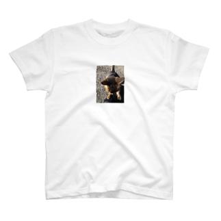 なでなでしてにゃー♪ T-shirts