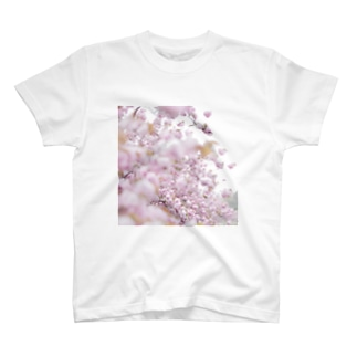 the last spring. T-shirts
