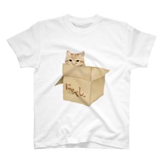 にゃべしっにゃんボールTシャツ 文字入り T-shirts