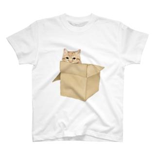 にゃべしっ にゃんボール T-shirts