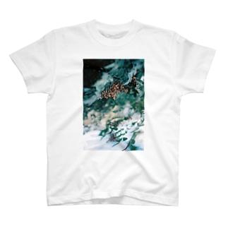 film_c T-shirts