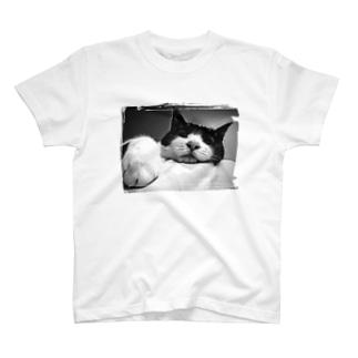 白黒ハチワレ猫 モノトーンver. T-shirts