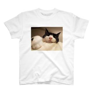 白黒ハチワレ猫 カラーver. T-shirts