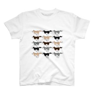 いっぱいハスキー T-shirts