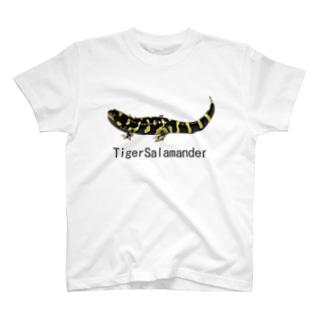 タイガーサラマンダー T-shirts