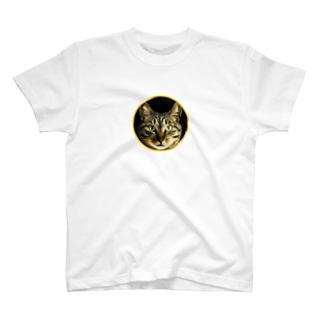 猫のリク君 T-shirts
