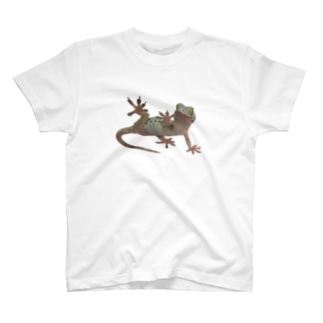 ぱくちー T-shirts