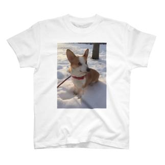 アイン T-shirts