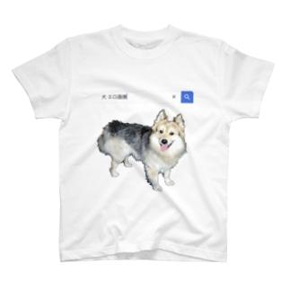 エロシャボロ T-shirts