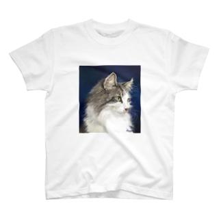 ノルウェージャンCarreくん T-shirts