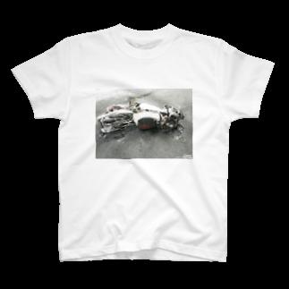 FUNAI RACINGのBurnout DUCATI Tシャツ