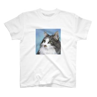 ノルウェージャンのCarreくん2 T-shirts